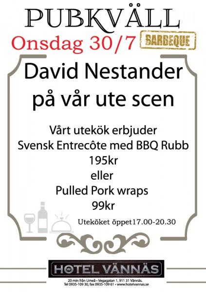 David-Nestander